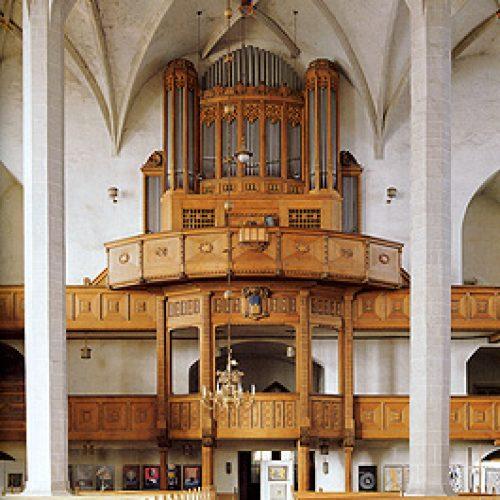 Eule Orgel Bautzner Dom